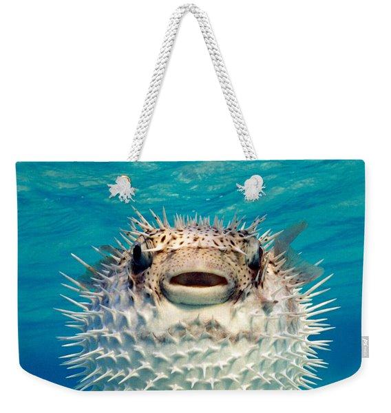 Close-up Of A Puffer Fish, Bahamas Weekender Tote Bag
