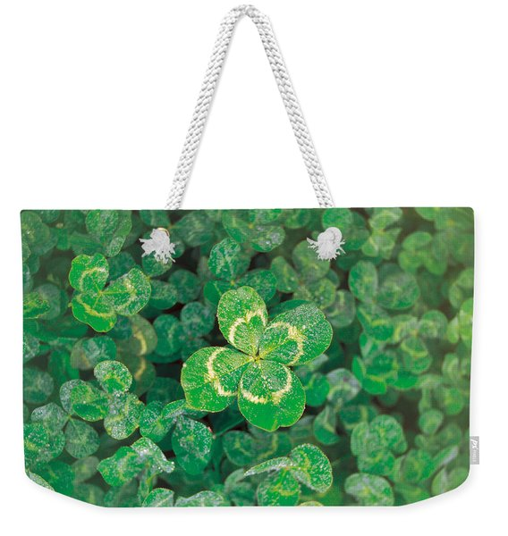 Close Up Of Green Clover Weekender Tote Bag