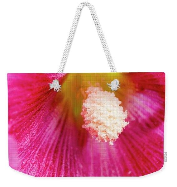 Close Up Of Hollyhocks  Alcea Rosea Weekender Tote Bag