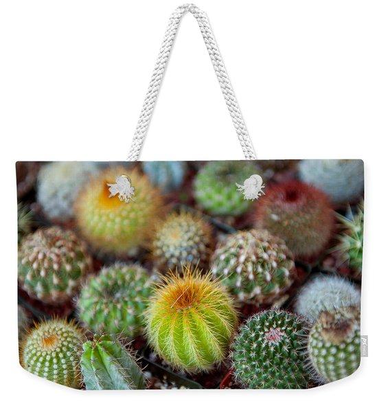 Close-up Of Multi-colored Cacti Weekender Tote Bag