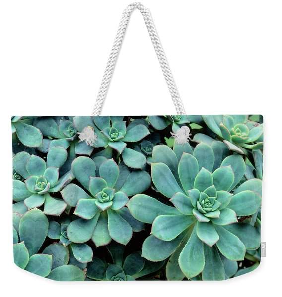 Close-up Of Plants, Buffalo And Erie Weekender Tote Bag