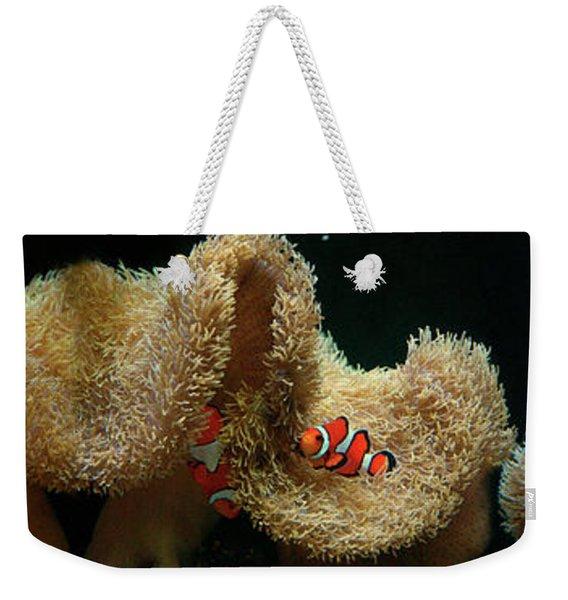 Clownfish Swimming Underwater Near Coral Weekender Tote Bag