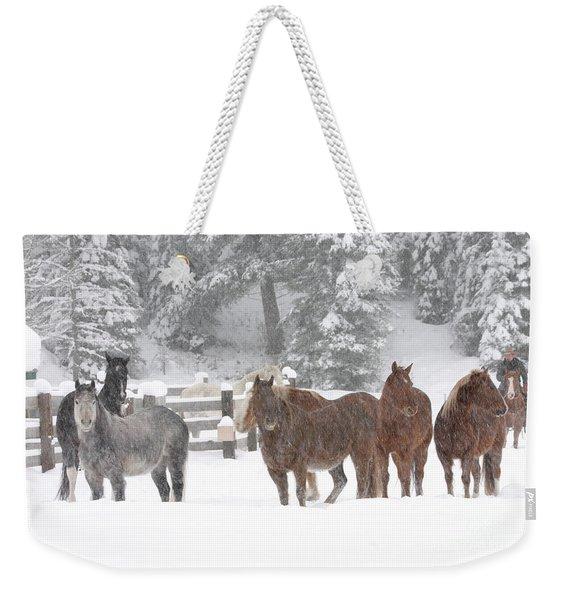 Cold Ponnies Weekender Tote Bag