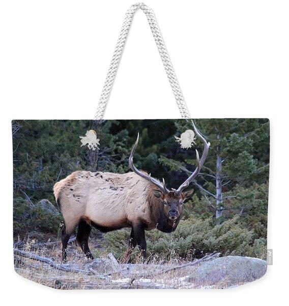 Colorado Bull Elk Weekender Tote Bag