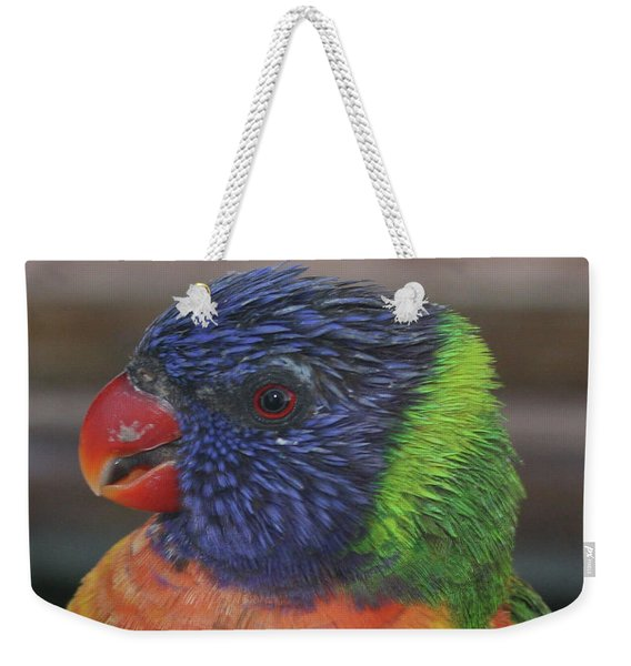 Colored Feathers Weekender Tote Bag