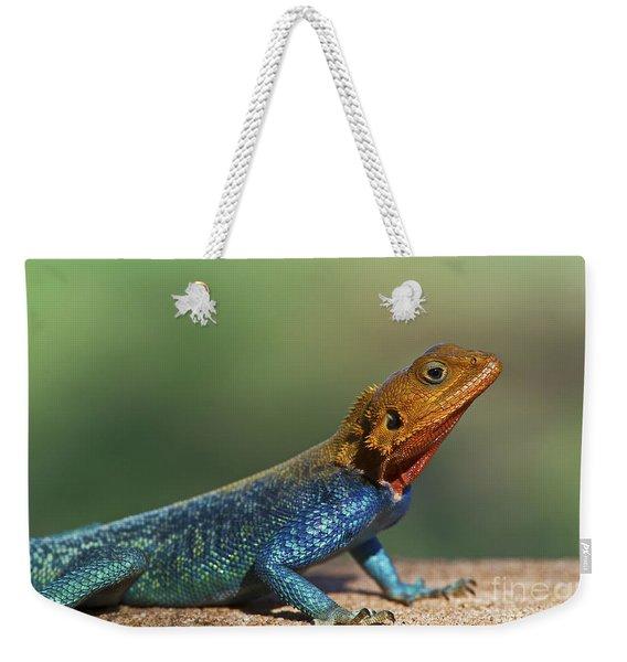 Colorful Awesomeness... Weekender Tote Bag