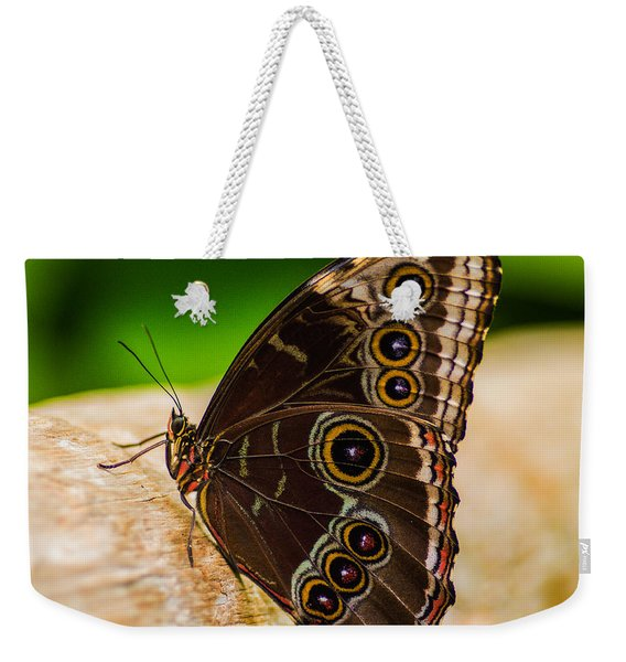 Weekender Tote Bag featuring the photograph Colour Display by Garvin Hunter