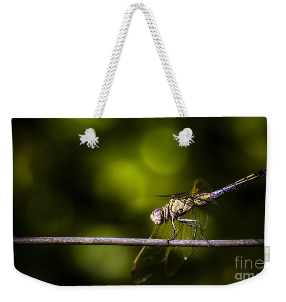 Colourful Australian Dragonfly At Insect Crossing Weekender Tote Bag