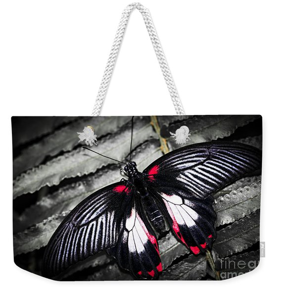 Common Swallowtail Butterfly Weekender Tote Bag