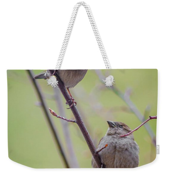 Conversation Of The Day Weekender Tote Bag