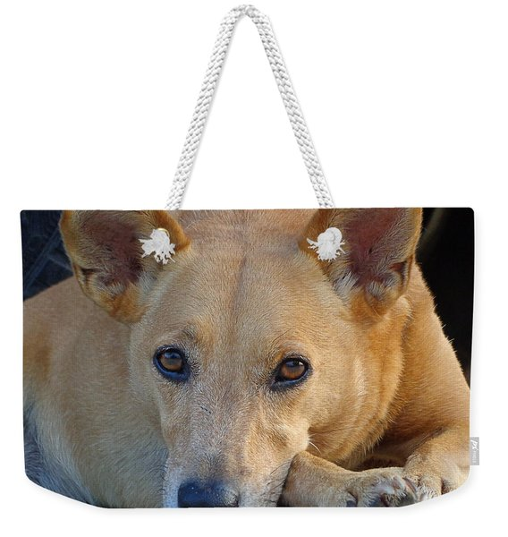 Cookie Chillin'  Weekender Tote Bag