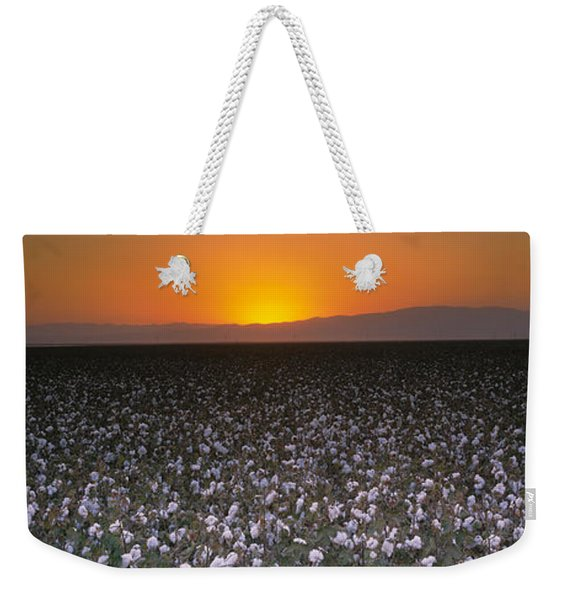 Cotton Crops In A Field, San Joaquin Weekender Tote Bag