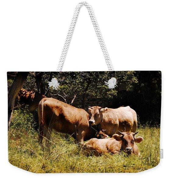 Cows And Moos Weekender Tote Bag