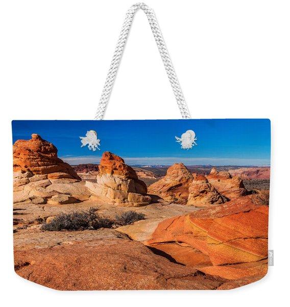 Coyote Lines Weekender Tote Bag