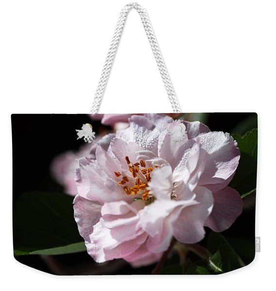 Crabapple Flowers Weekender Tote Bag