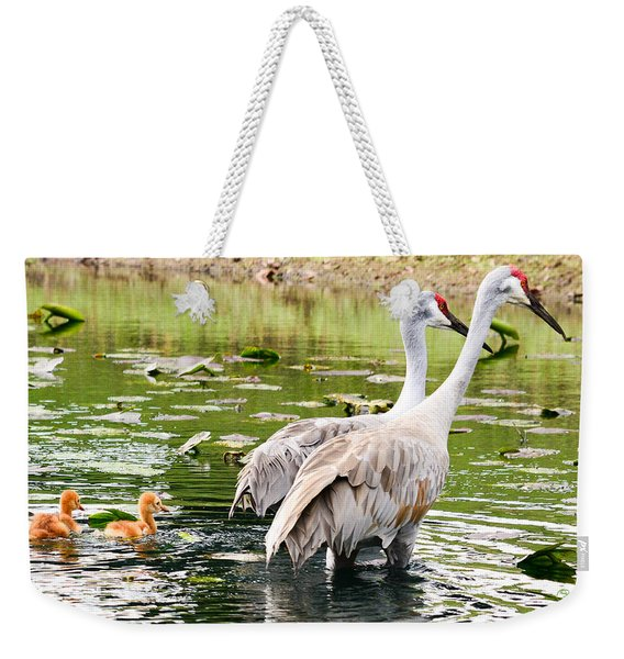 Crane Family Goes For A Swim Weekender Tote Bag