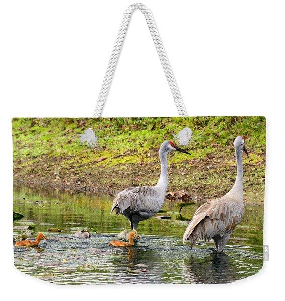 Crane Family Swim II Weekender Tote Bag