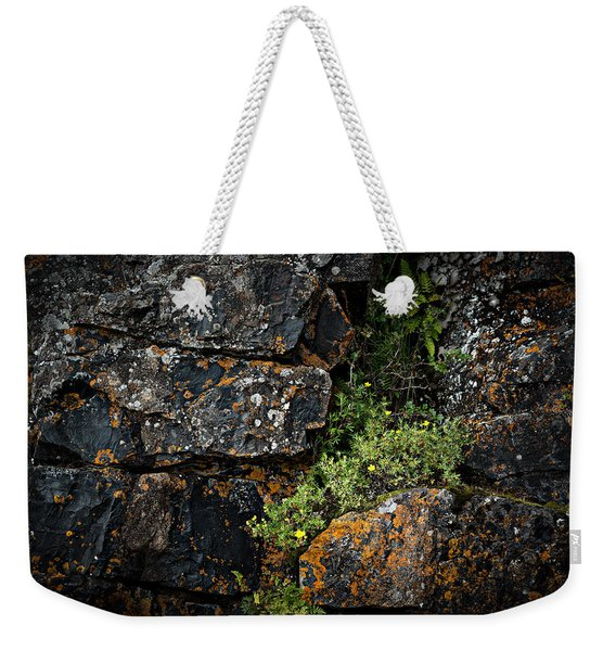 Weekender Tote Bag featuring the photograph Crevice  by Doug Gibbons