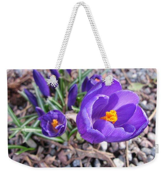 Crocus Sativus Weekender Tote Bag