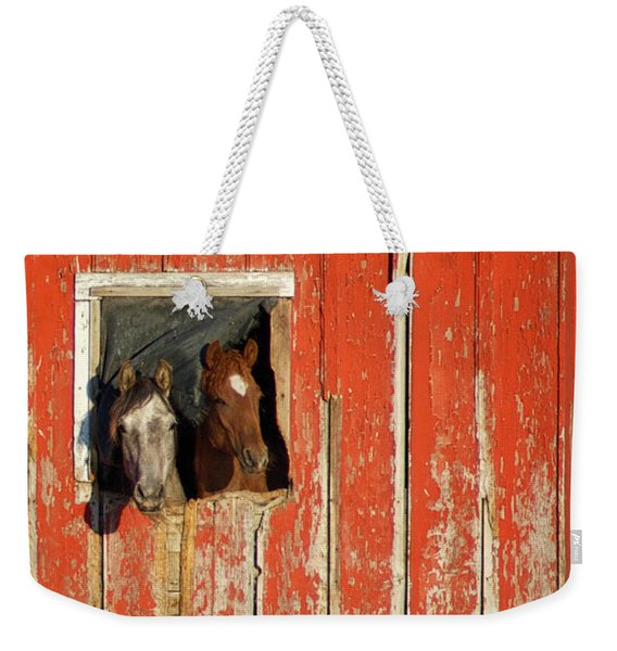 Weekender Tote Bag featuring the photograph Curiosity by Mary Lee Dereske