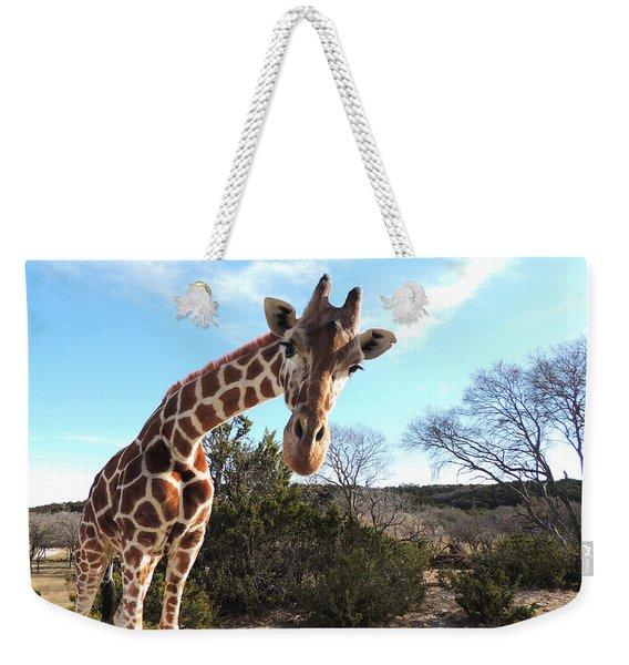 Curious Giraffe At Fossil Rim Wildlife Center Weekender Tote Bag