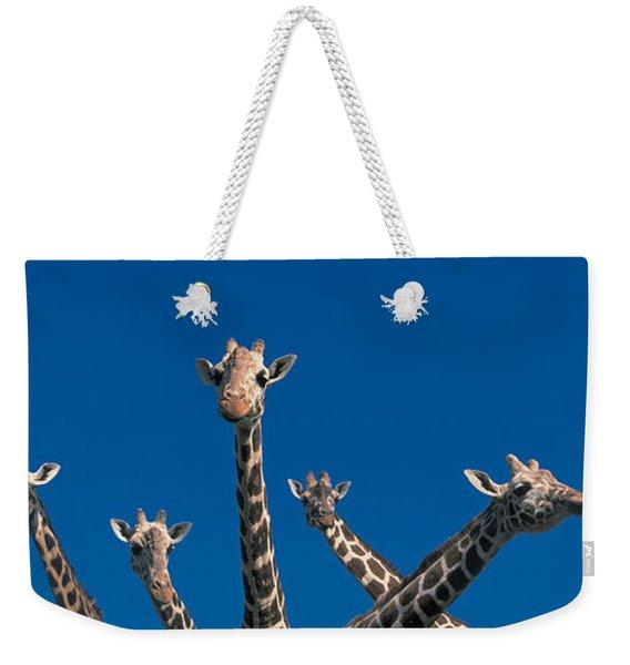 Curious Giraffes Concept Kenya Africa Weekender Tote Bag