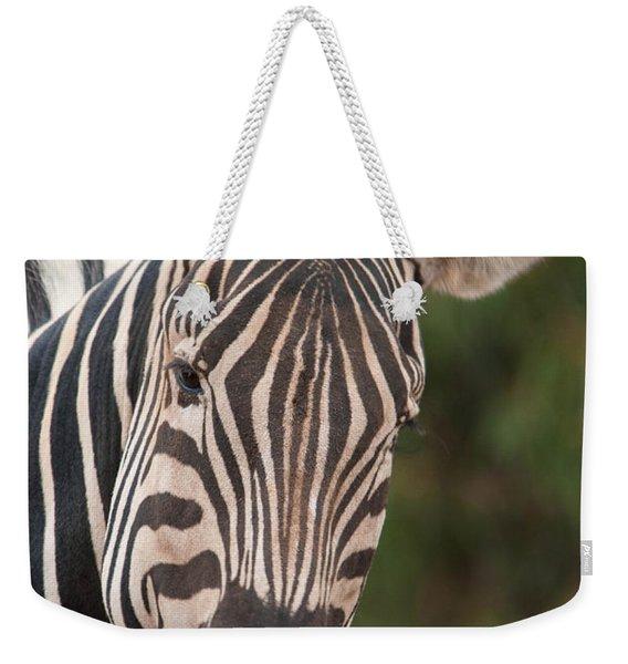 Curious Zebra Weekender Tote Bag