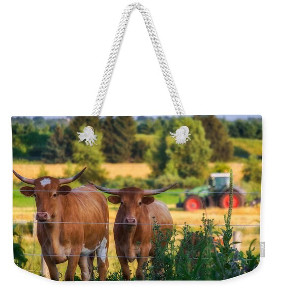 Weekender Tote Bag featuring the photograph Curiousity by Garvin Hunter