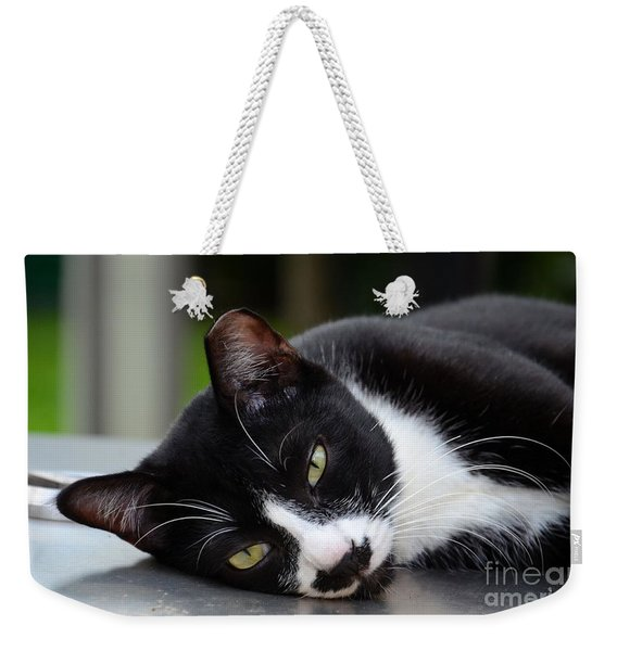 Cute Black And White Tuxedo Cat With Nipped Ear Rests  Weekender Tote Bag