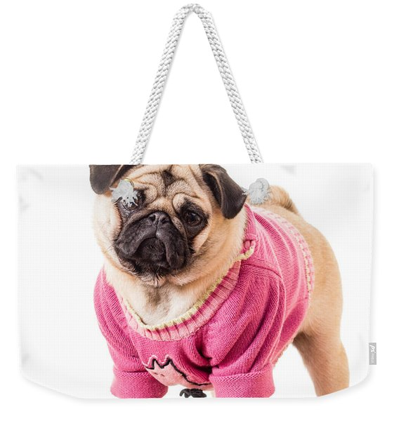 Cute Pug Wearing Sweater Weekender Tote Bag