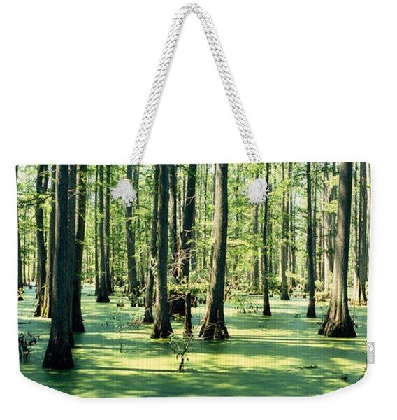 Cypress Trees In A Forest, Shawnee Weekender Tote Bag