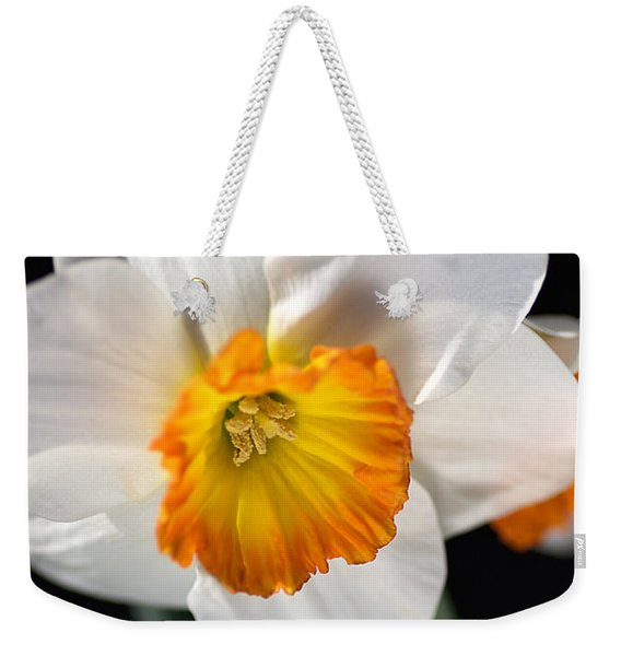Daffodil In White Weekender Tote Bag