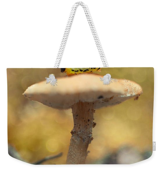 Weekender Tote Bag featuring the photograph Daily Excercice by Jaroslaw Blaminsky
