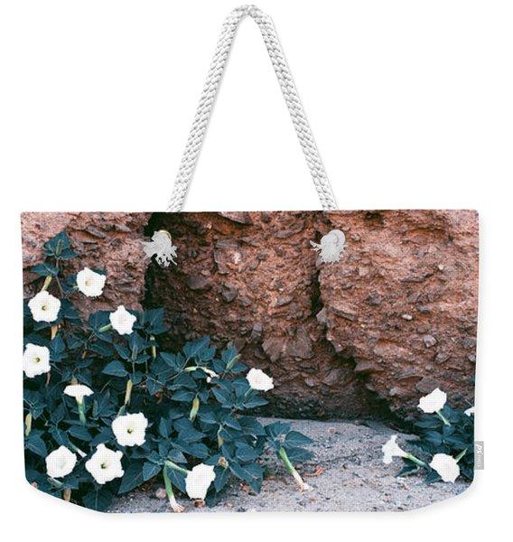 Darura Blooms After Spring Rains In Box Weekender Tote Bag