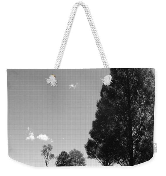 Davenport Park Weekender Tote Bag