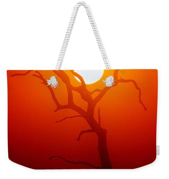 Dead Tree Silhouette And Glowing Sun Weekender Tote Bag