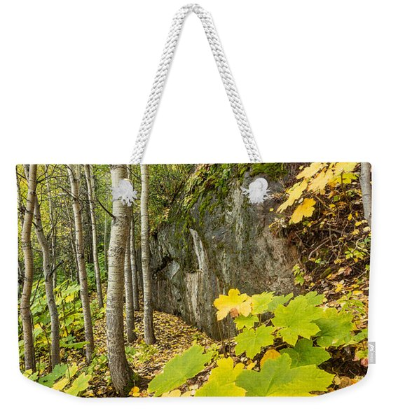 Weekender Tote Bag featuring the photograph Devil's Club In Autumn by Tim Newton