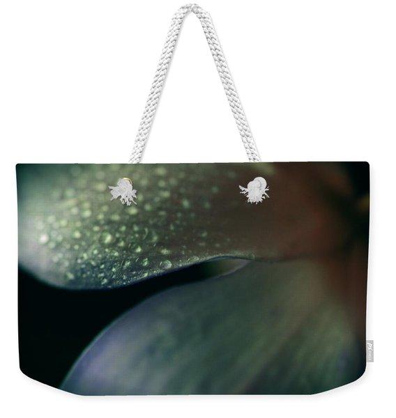 Dew Drops On Dogwood Flower  Weekender Tote Bag