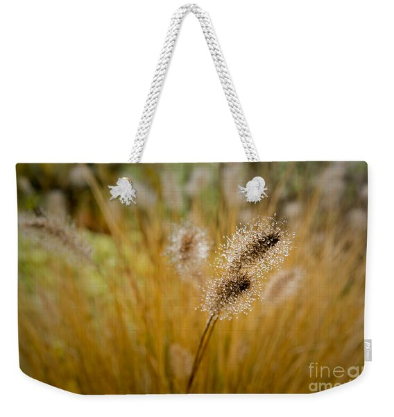 Dew On Ornamental Grass No. 4 Weekender Tote Bag