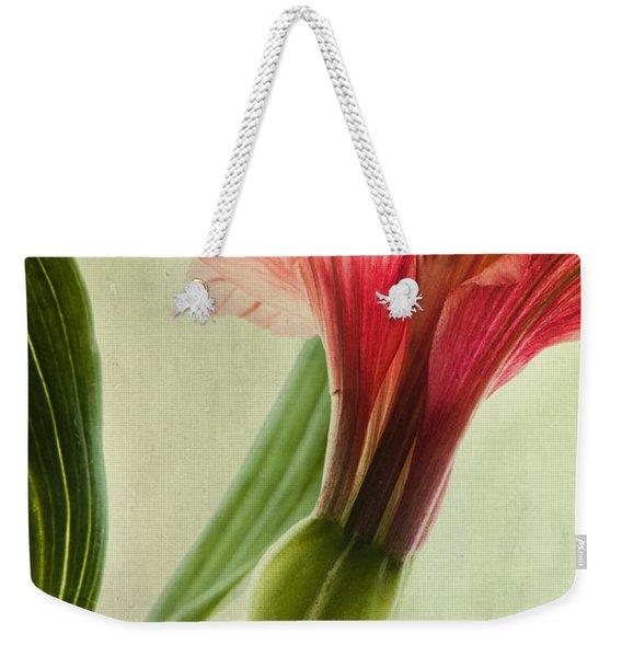 Dim Colours Weekender Tote Bag