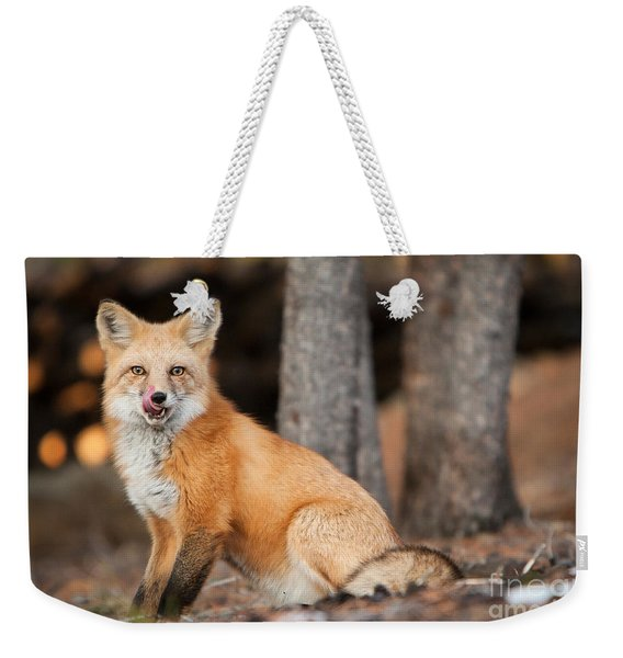 Weekender Tote Bag featuring the photograph Dinner Was Good by John Wadleigh