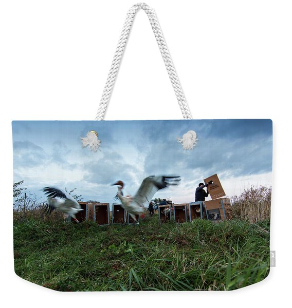 Direct Autumn Release Weekender Tote Bag