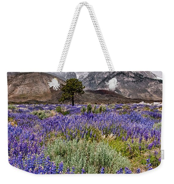 Division Creek Lupine Weekender Tote Bag