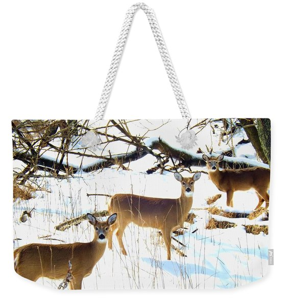 Does In The Snow Weekender Tote Bag