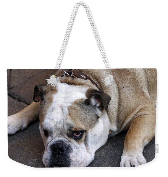 Dog. Tired. Weekender Tote Bag