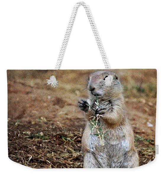 Weekender Tote Bag featuring the photograph Doggie Snack by Jemmy Archer