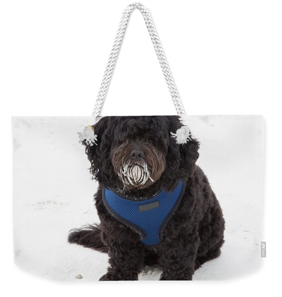 Doggone Good Beach Fun Weekender Tote Bag