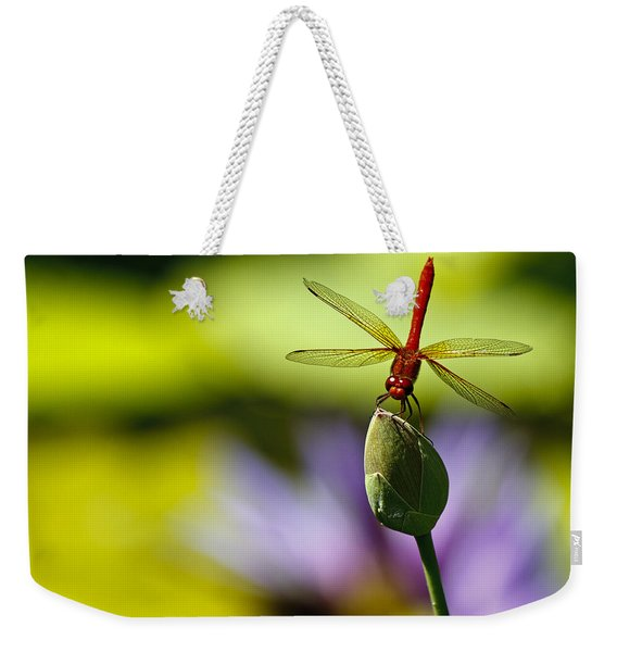 Dragonfly Display Weekender Tote Bag