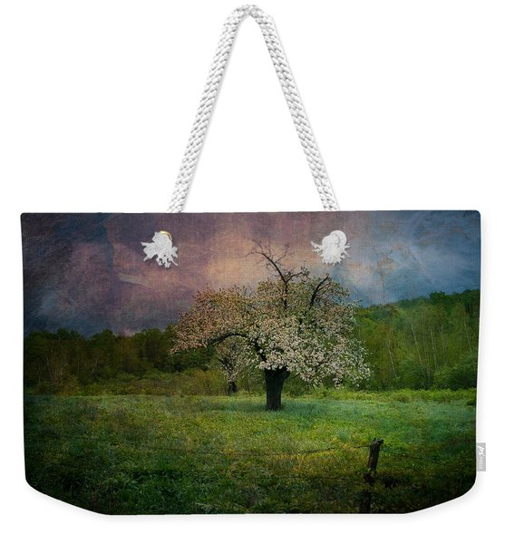 Weekender Tote Bag featuring the photograph Dream Of Spring by Jeff Folger