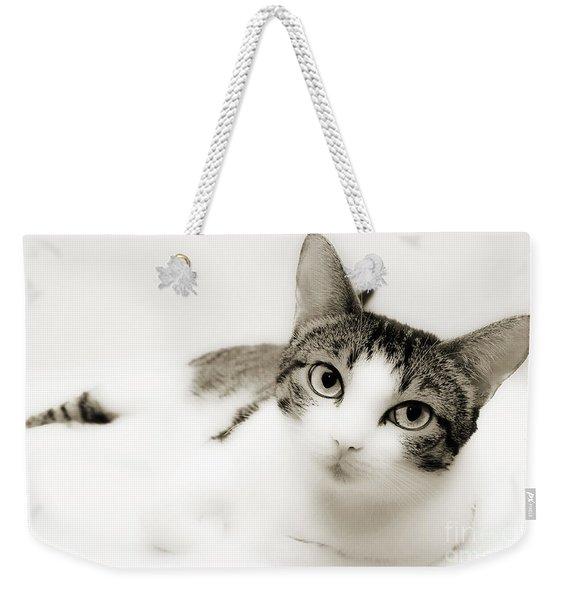 Dreamy Cat 2 Weekender Tote Bag